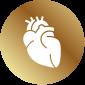 zdrave-srdce